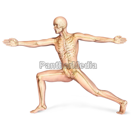 human male in dynamic posture with