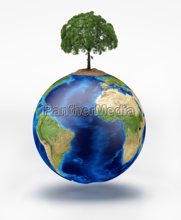 planet earth with a tree on