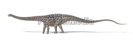 enorme rilasciato animale rettile denti lucertola