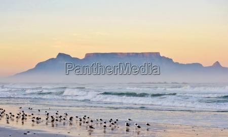 africa alba onde cielo firmamento paesaggio