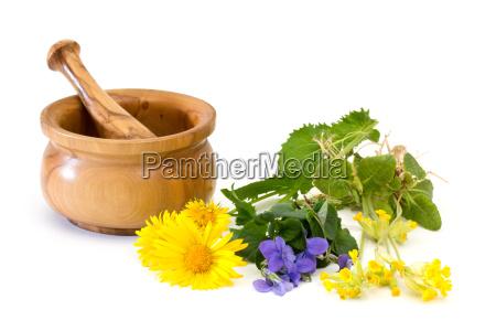 erbe medicinali con malta e pestello