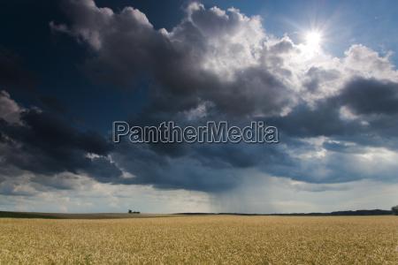 campo grandangolo tempesta temporale campo di