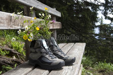 andare escursione gita fiore fiori scarpe