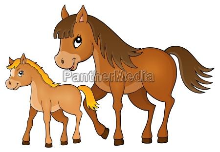 cavallo animale mammifero animali cavalli pony