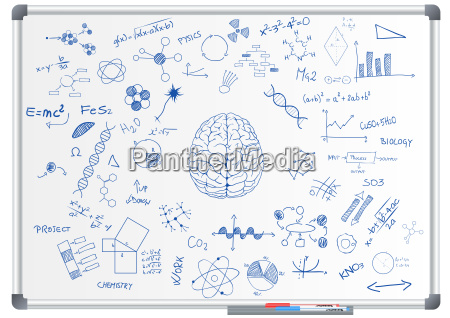 brain, science, chalkboard - 16338677