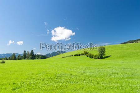 nuvola baviera algovia germania prato paesaggio