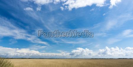 danimarca sguardo vista nuvole canne cielo