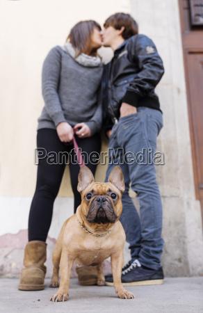 ritratto di bulldog francese con proprietari