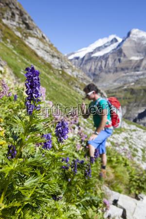un escursionista maschile sta odorando un