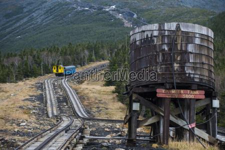 treno veicolo mezzo di trasporto albero