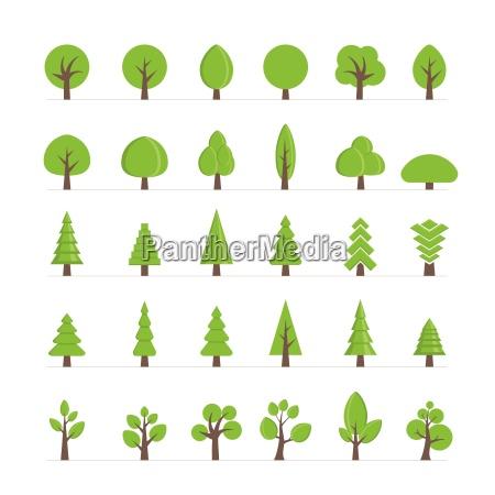 vector gli alberi differenti i cespugli