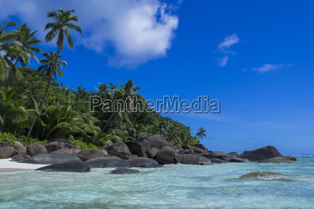 riva del mare spiaggia silhouette seychelles