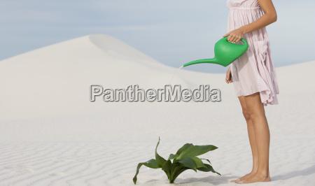 una donna che innaffia una pianta