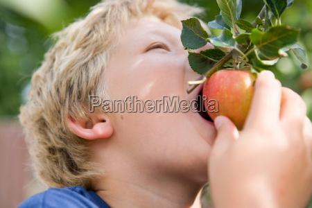 harvest time 14