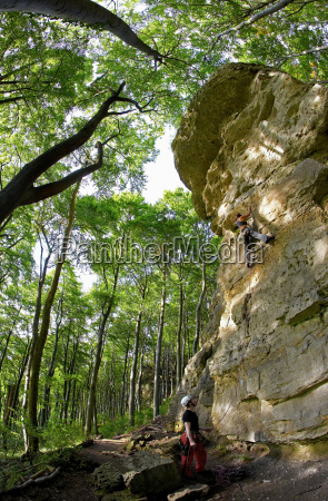 people climbing rock face in forest