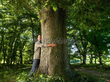 man embracing a tree trunk