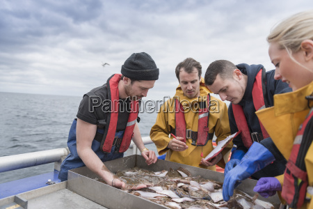 research scientists measuring fish on research