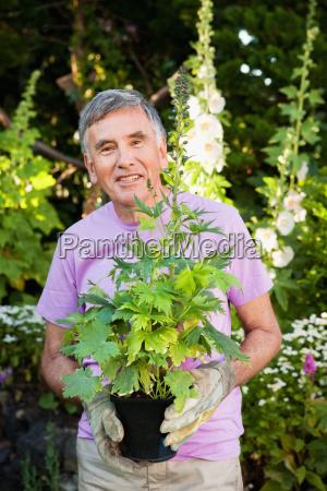mature man holding plant