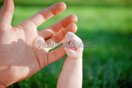 baby grabbing an adults hand