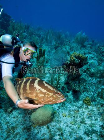 interazione con la vita marina