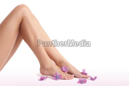 le gambe delle belle donne