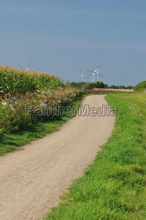 dike path through the fields near