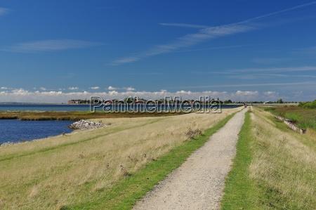 dike landscape at gollendorfer wiek sight