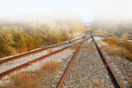 treno veicolo mezzo di trasporto nebbia