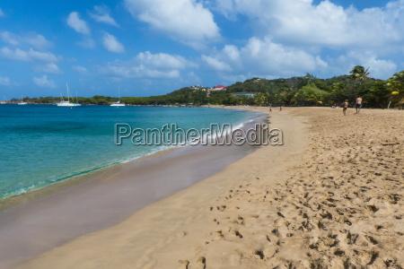 sand beach of salt whistle bay