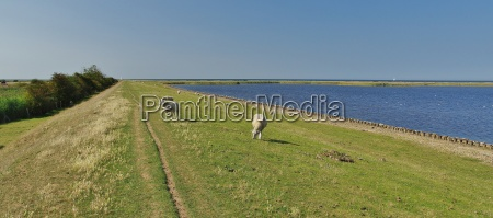 landscape protection area fastensee fehmarn island