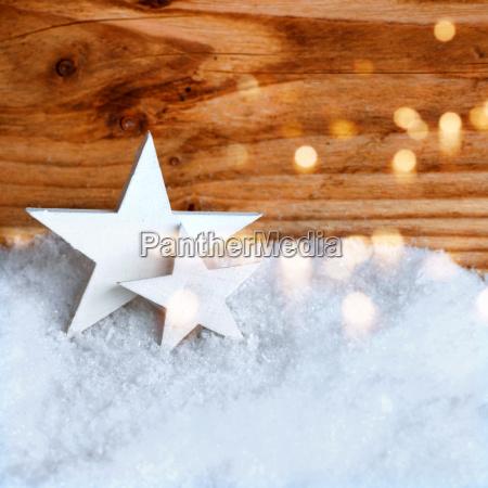 stelle di natale bianche nella neve
