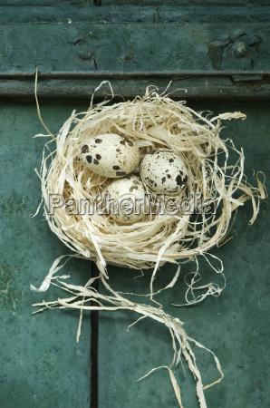nido di pasqua con tre uova