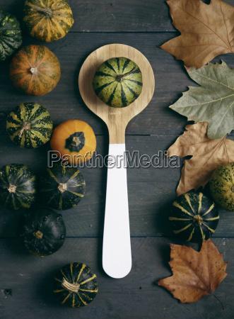zucche ornamentali cucchiaio di legno e