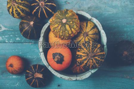 zucche ornamentali in ciotola