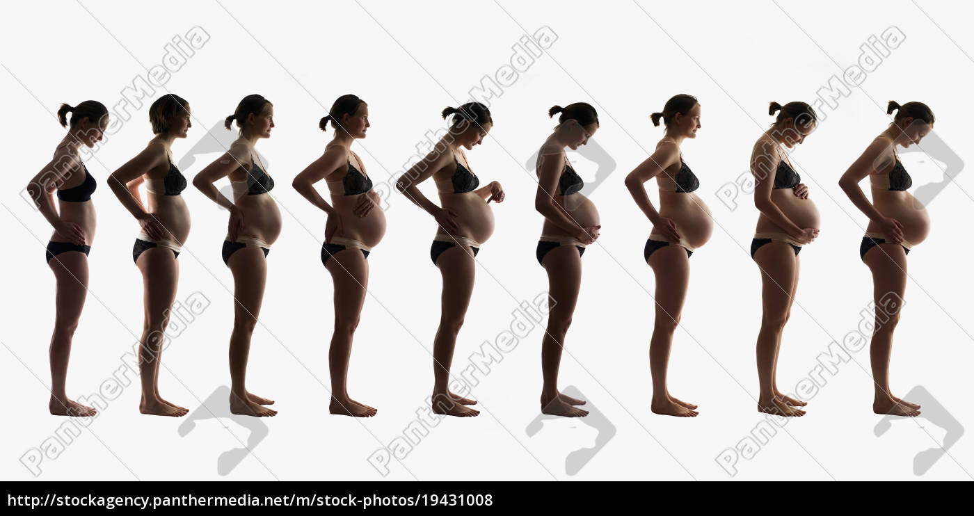 composite, of, 9, months, of, pregnancy - 19431008