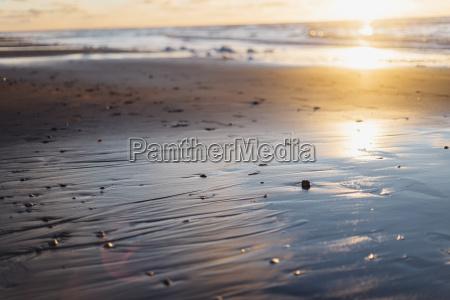 tranquil beach in backlight