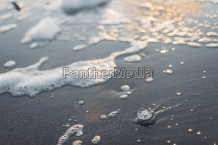 cockles on the beach