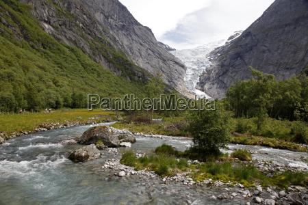 colore albero inverno formazione orizzontale norvegia