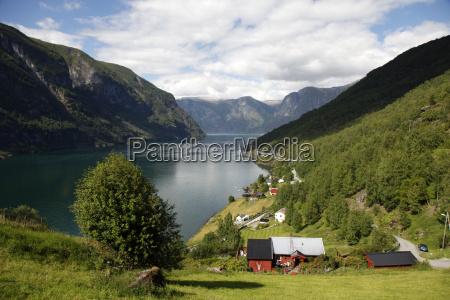 colore albero collina riflesso orizzontale norvegia