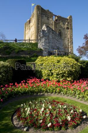citta fiore fiori europa luoghi allaperto