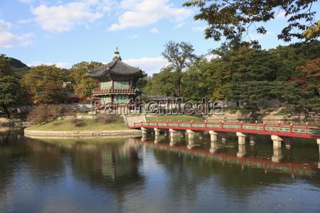 viaggio viaggiare albero alberi asia ponte