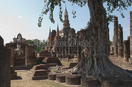 the old buddhist temple of wat
