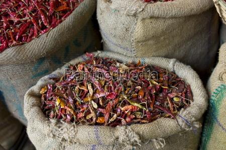 viaggio viaggiare spezia colore asia india