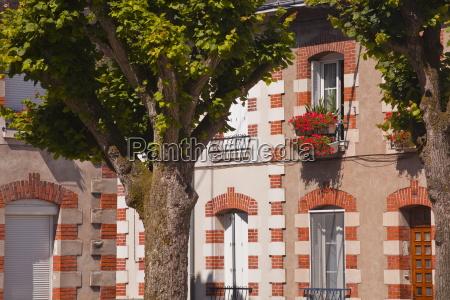 casa costruzione case albero alberi europa