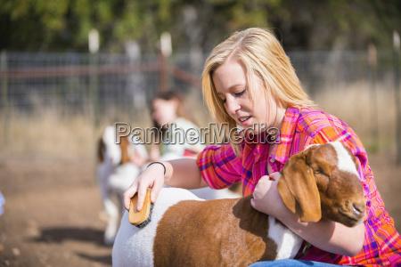 persone popolare uomo umano animale capra