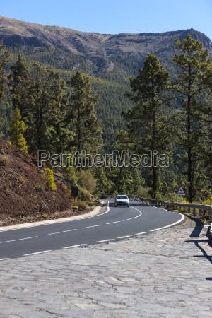 viaggio viaggiare albero traffico parco nazionale