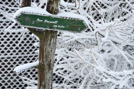viaggio viaggiare ambiente albero inverno animale