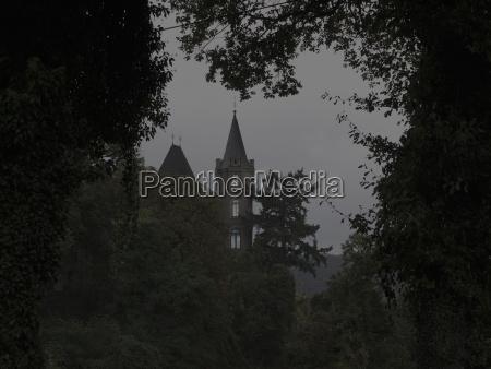 torre albero reno germania allaperto crepuscolo