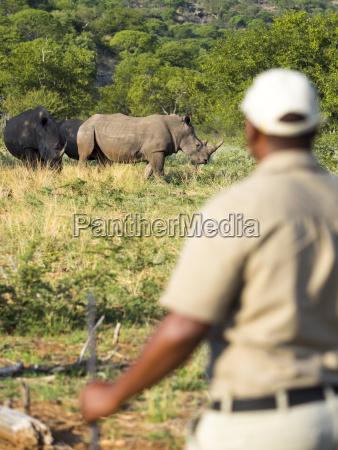 namibia allaperto in piedi natura giorno