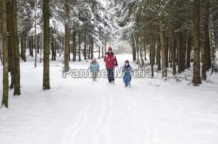 andare viaggio viaggiare albero inverno catarro